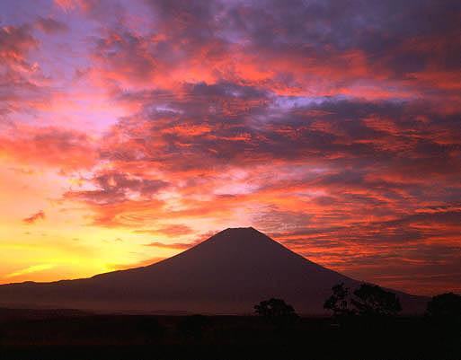 朝焼けの朝霧高原